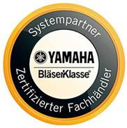 Systempartner Instrumentenversicherung Blaeserklassen.